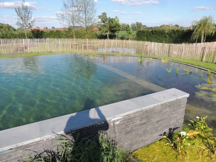 Zwembaden (4)